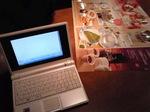 コンピューターとバーミヤン
